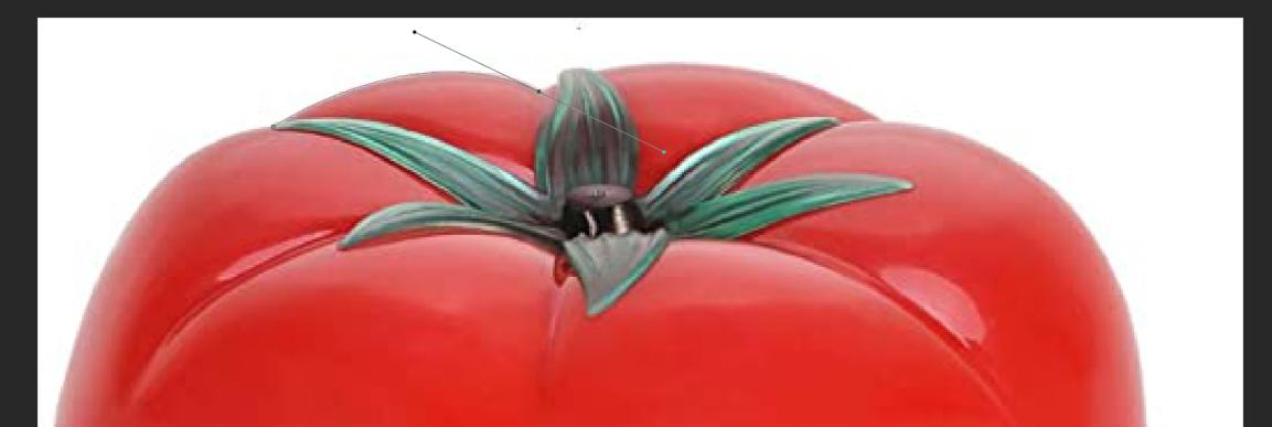 tomate-dans-photoshop