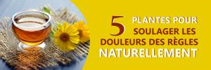 Soulager les douleurs des règles naturellement grâce à 5 plantes