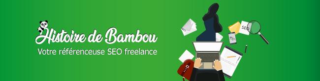 Histoire-de-bambou-référenceur-seo-freelance