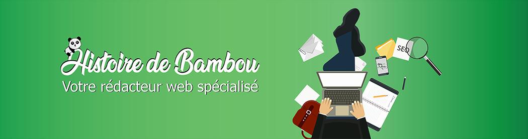 histoire-de-bambou-redacteur-web-freelance