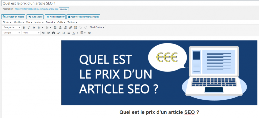 article-wordpress-prix-article-seo